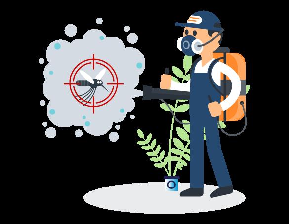 Professional Pest Control Ashgrove