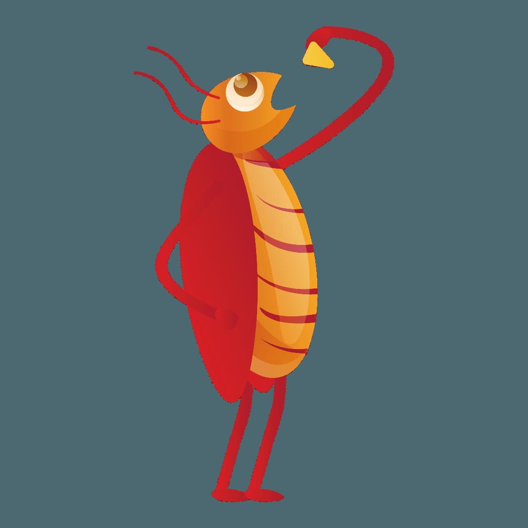 Cockroach Control Ashgrove